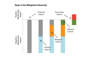 mitigation hierarchy